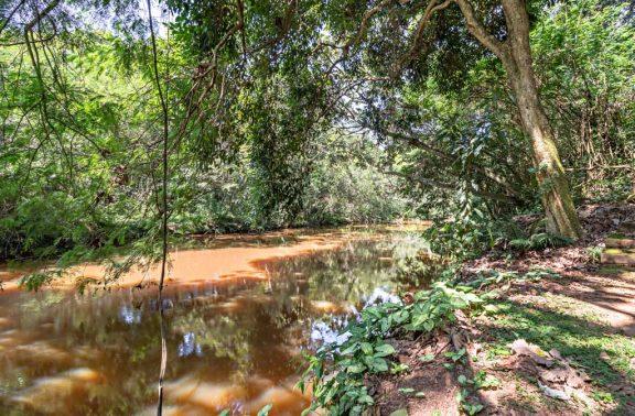 Trilha para o Rio Jacaré Pepira