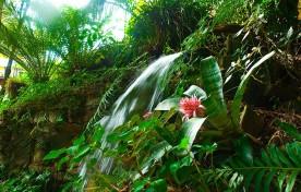 Cascata – Mirágua Refúgios