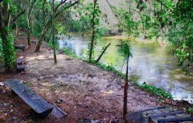 Margem do Rio Jacaré Pepira