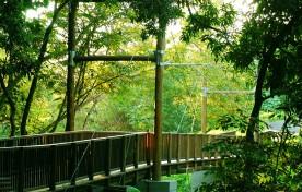 Ponte Estaiada Arnaldo Simões – Mirágua Refúgios