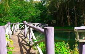 Ponte sobre o Lago – Mirágua Refúgios